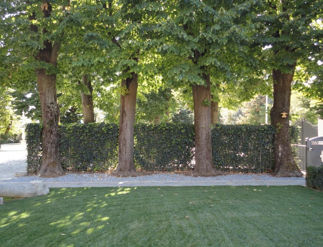 giardino a Bologna 11