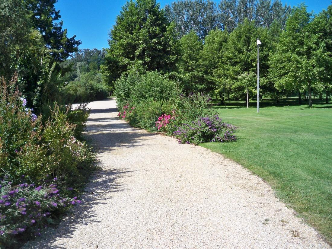 giardino a Forte dei Marmi 2