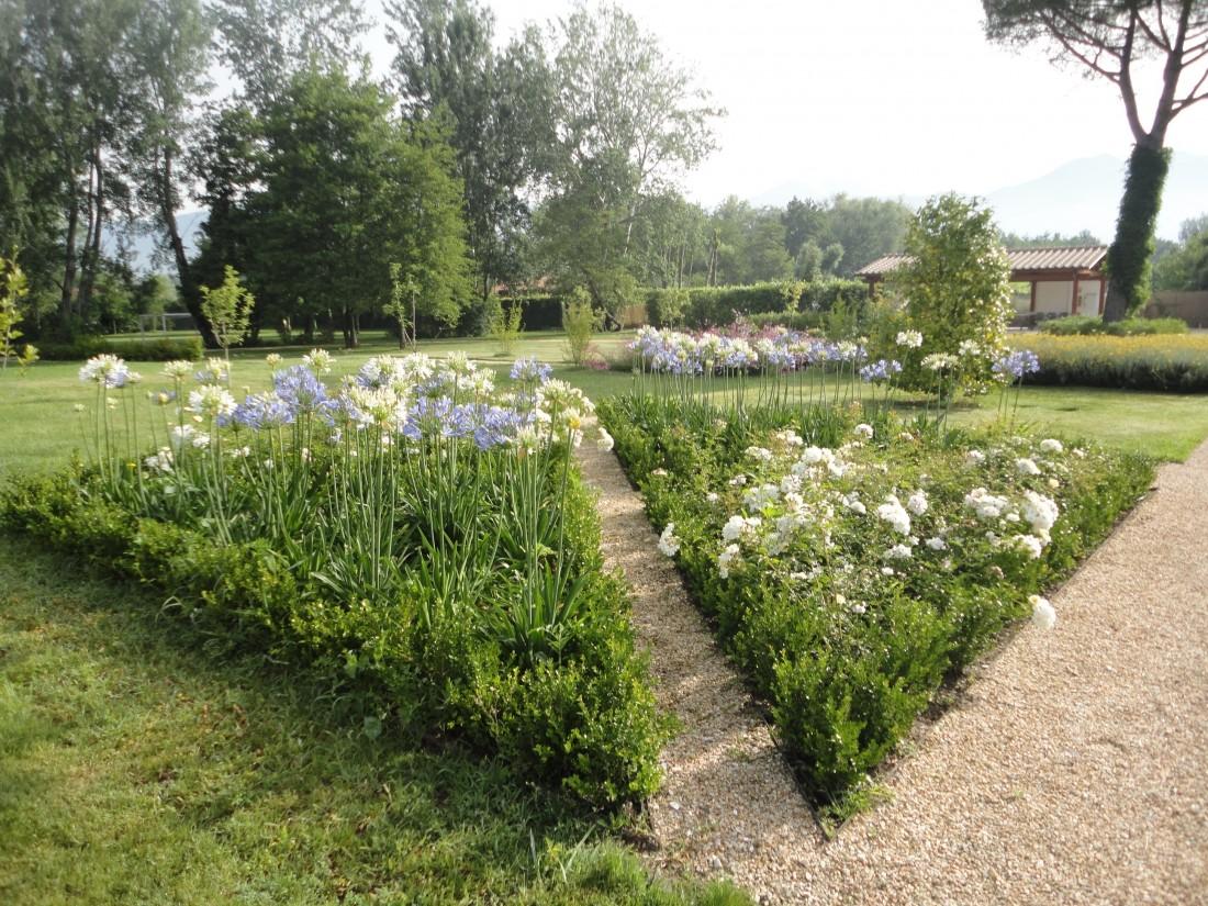 giardino a Forte dei Marmi 8