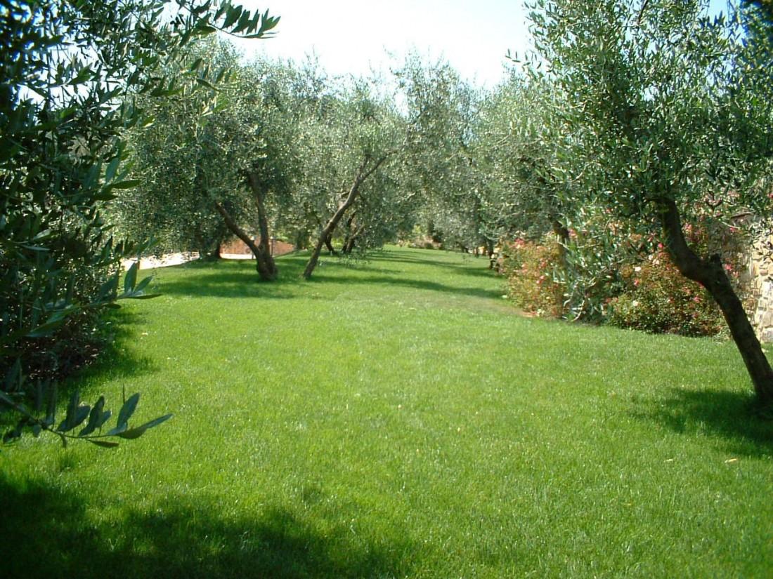 giardino a Perugia 5