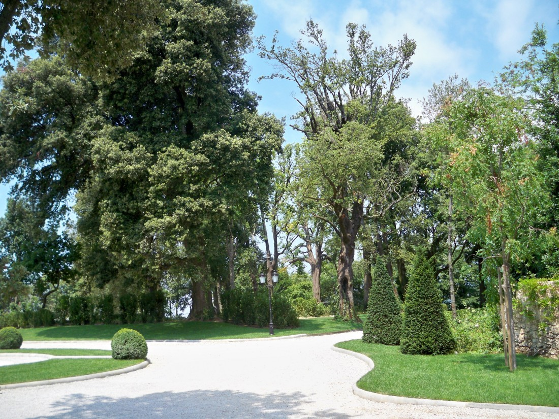 giardino a Pietrasanta 21