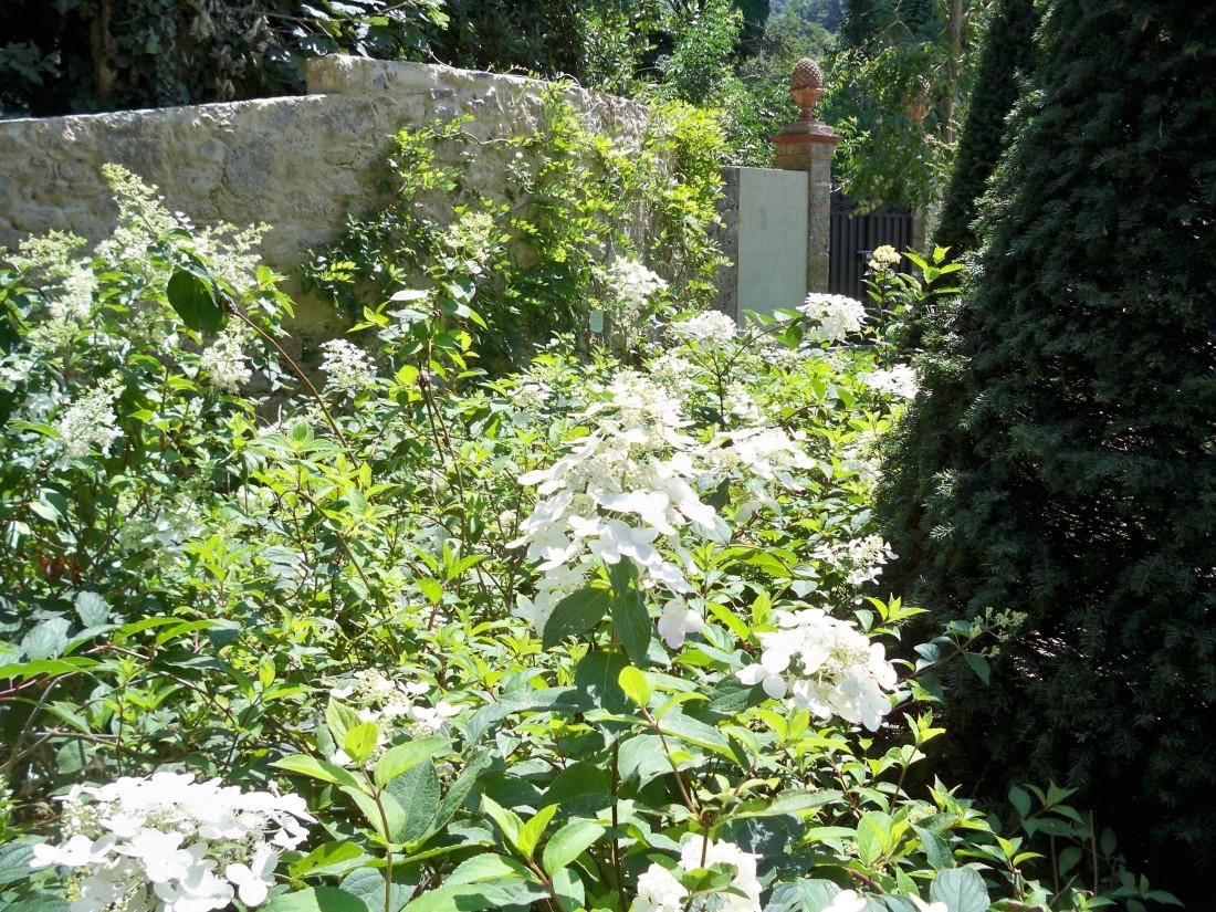 giardino a Pietrasanta 26