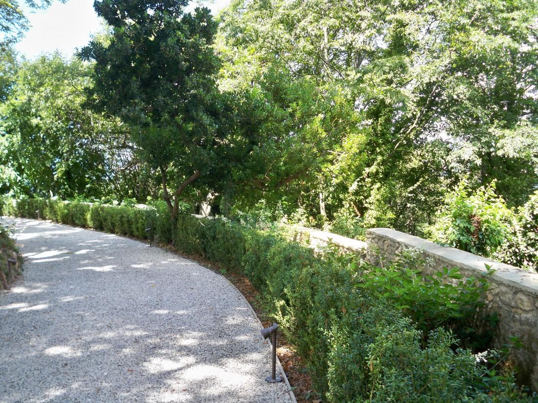 giardino a Pietrasanta 29