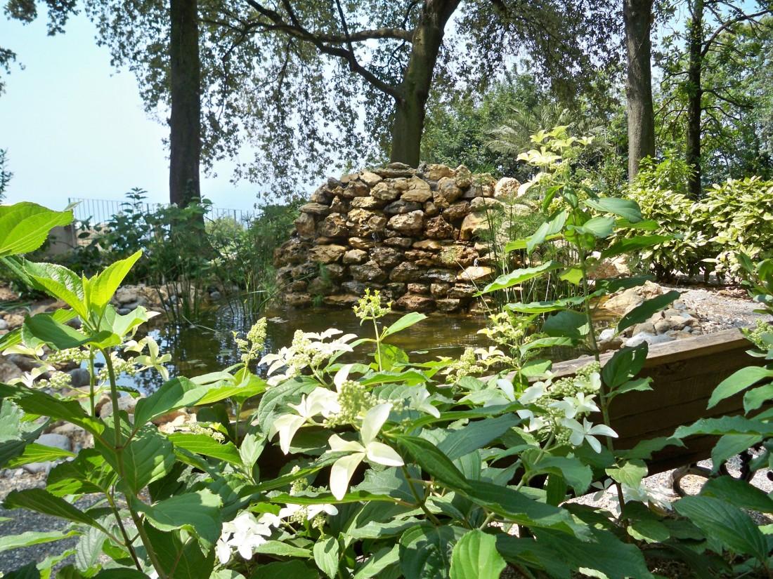giardino a Pietrasanta 33