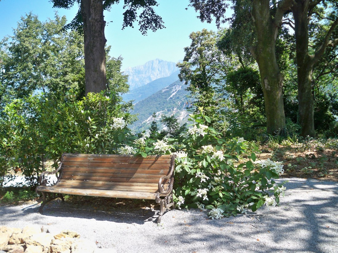 giardino a Pietrasanta 38