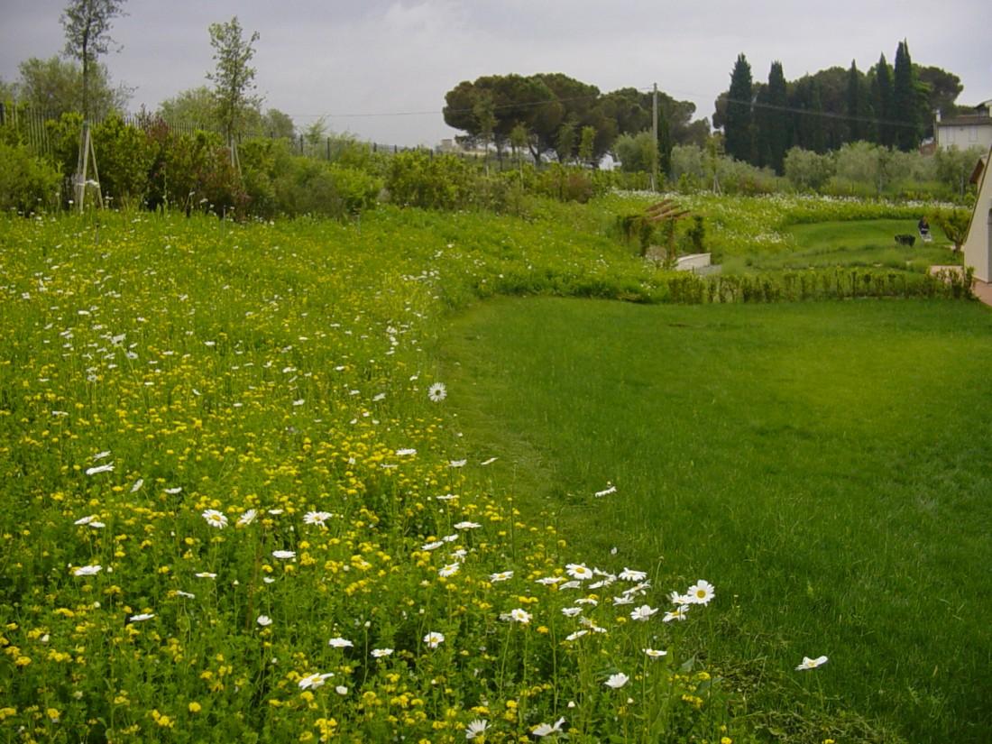 giardino agriturismo a Firenze 10