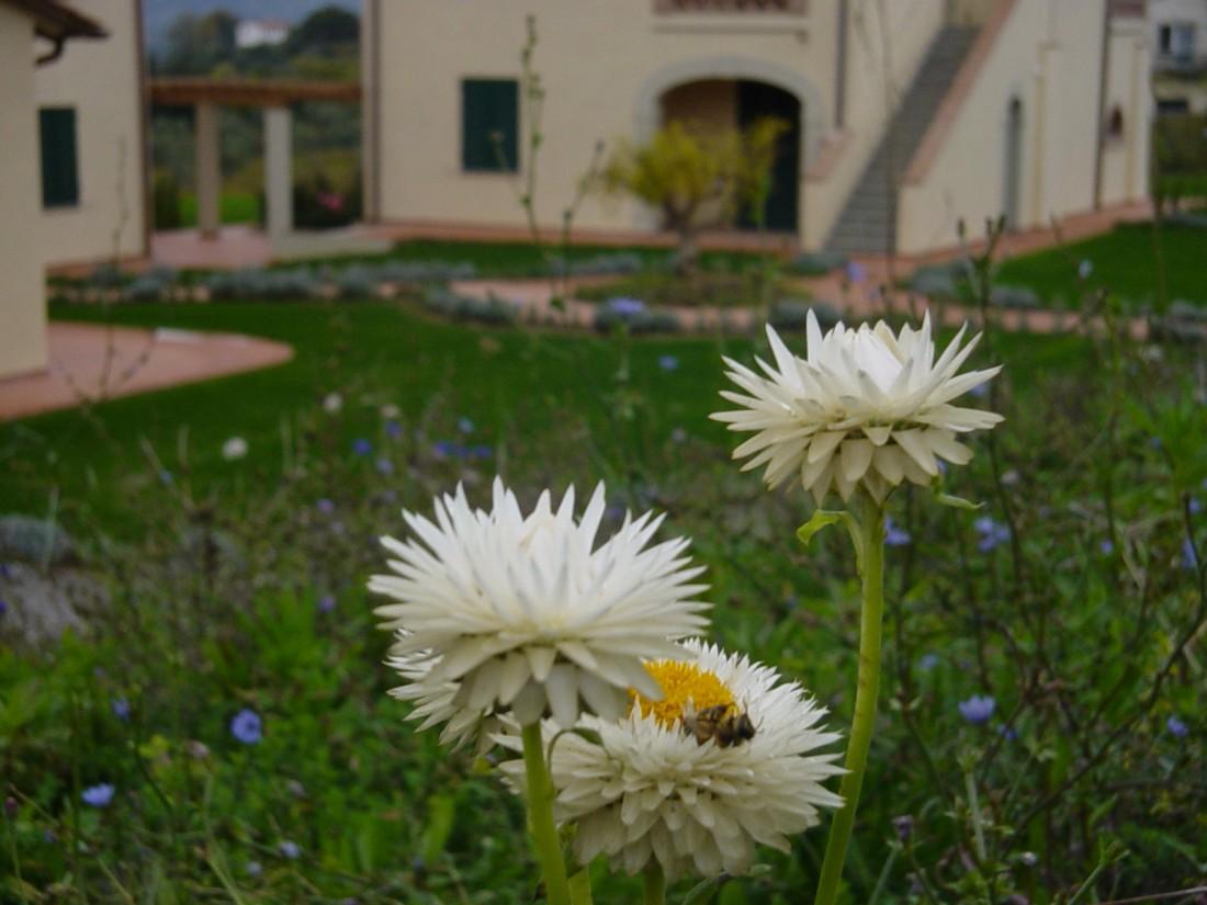 giardino agriturismo a Firenze 12