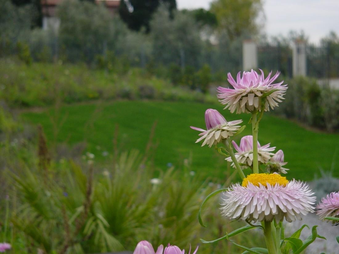 giardino agriturismo a Firenze 14