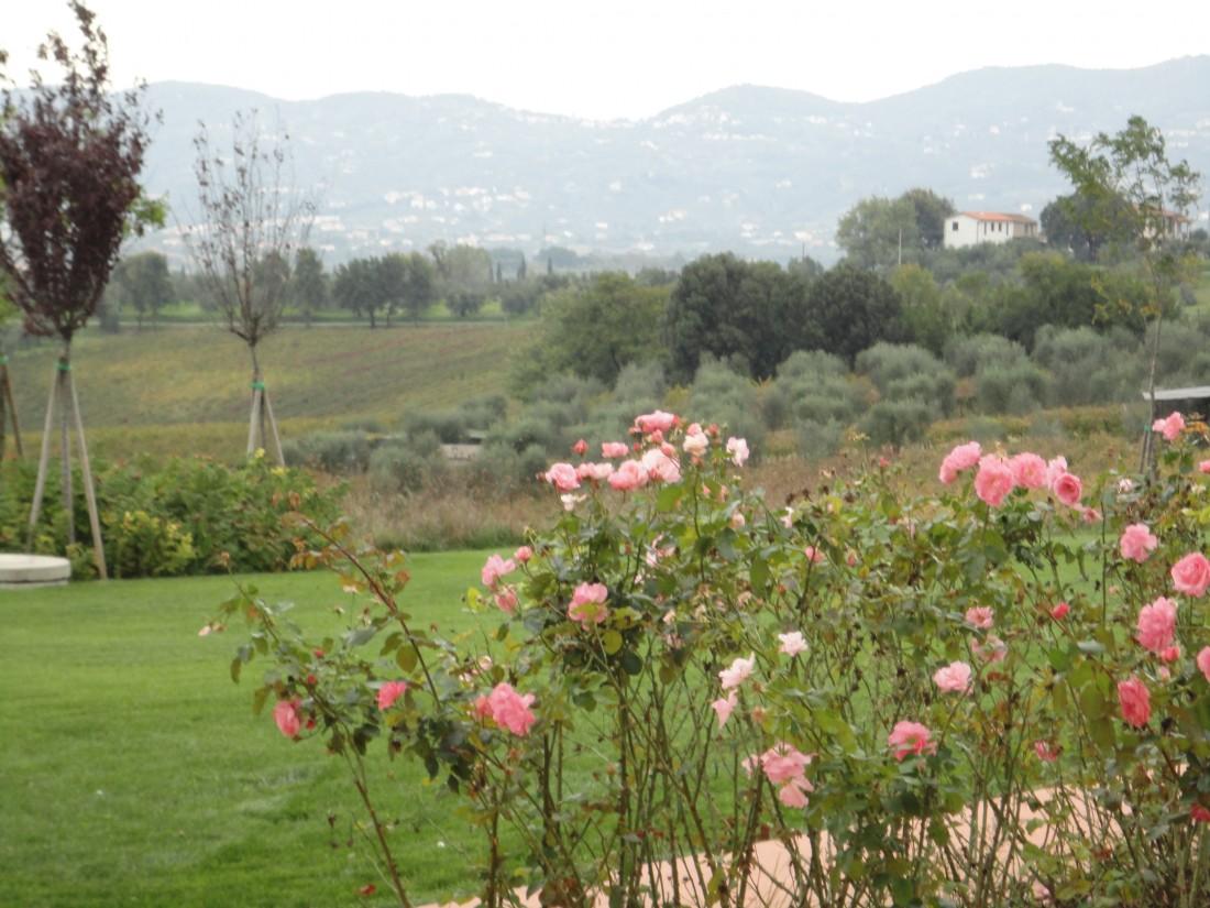giardino agriturismo a Firenze 5