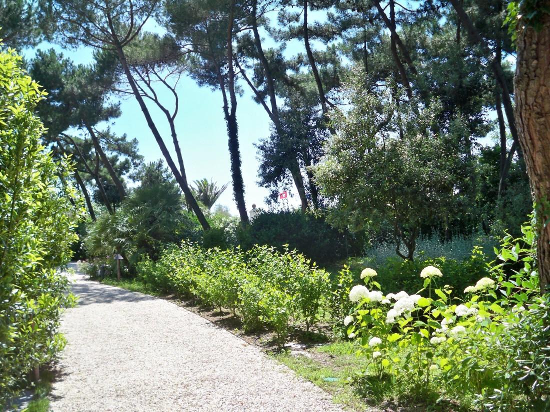 giardino in Versilia 12