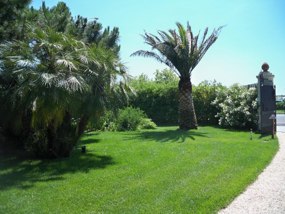 giardino in Versilia 13