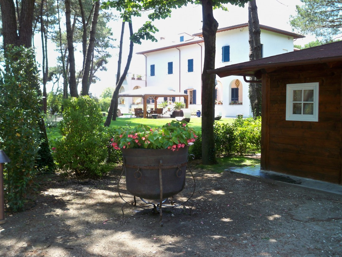 giardino in Versilia 2